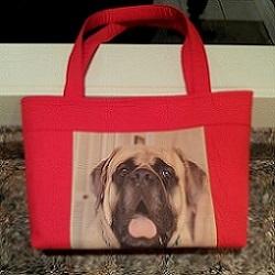 jackson-purse-pg.jpg